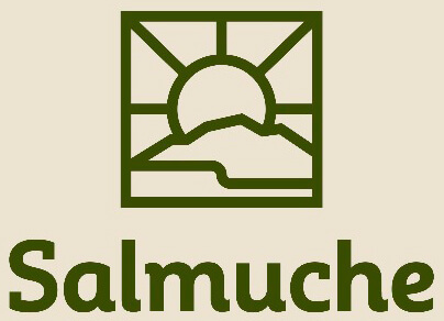 Salmuche